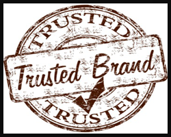 Build your brand to last online marketing service and brand protection